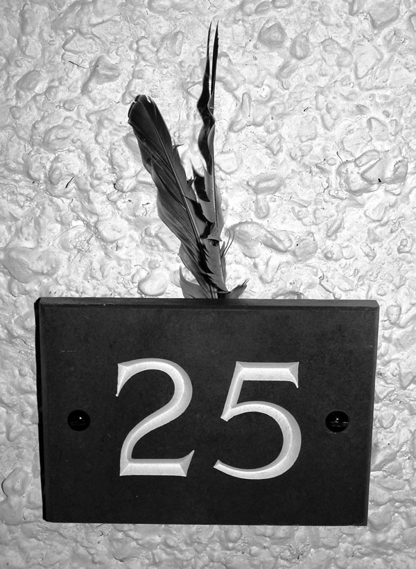 twenty five -- nikon coolpix 5700